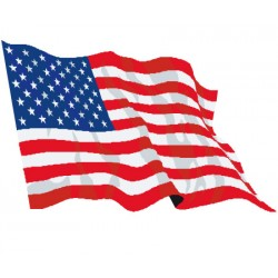 Drapeau de supporter - USA