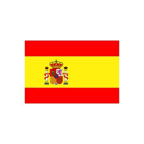 Lot de 100 drapeaux de table Espagne en plastique