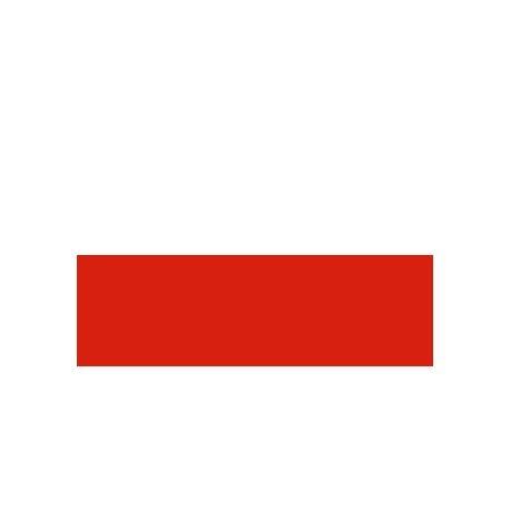 Lot de 100 drapeaux de table Pologne en plastique