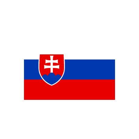 Lot de 100 drapeaux de table Slovaquie en plastique