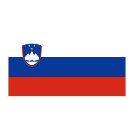 Lot de 100 drapeaux de table Slovénie en plastique