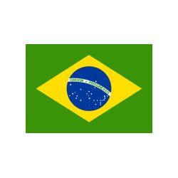 Lot de 100 drapeaux de table Brésil en plastique