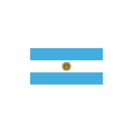 Drapeaux 14x21 Argentine à agiter