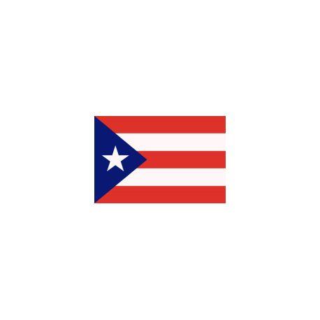 Drapeaux 14x21 Porto Rico à agiter