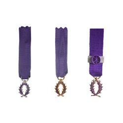 Médaille Réduction de l'Ordre des Palmes Académiques