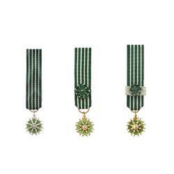 Médaille Réduction de l'Ordre des Arts et des Lettres