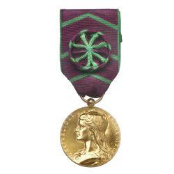 Médaille de la Protection Judiciaire de la Jeunesse