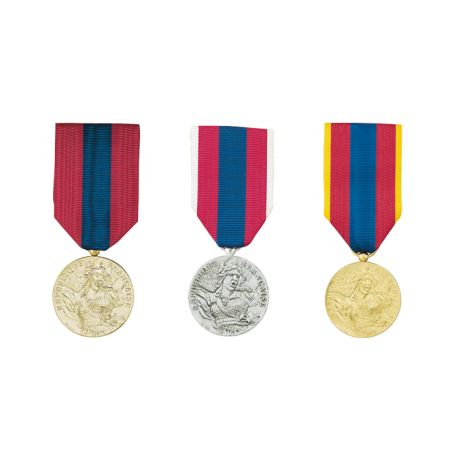 Médaille de la Défense Nationale