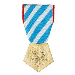 Médaille de l'Internement pour faits de résistance